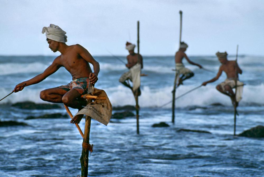 Kelionė į Šri Lanką (egzotinės kelionės) 02
