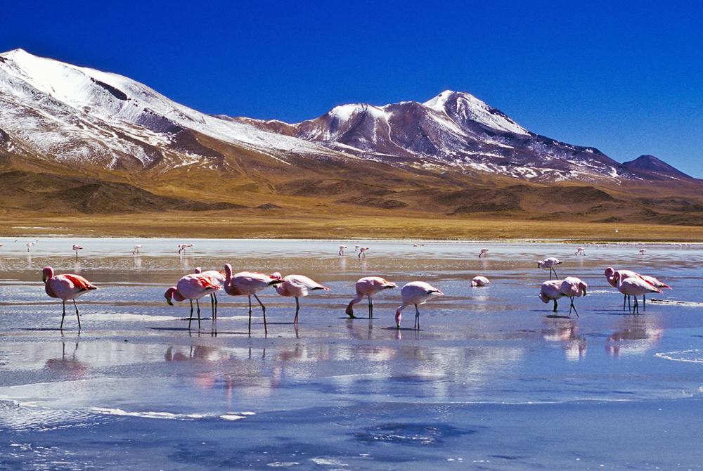 Kelionė į Boliviją (egzotinės kelionės) 03