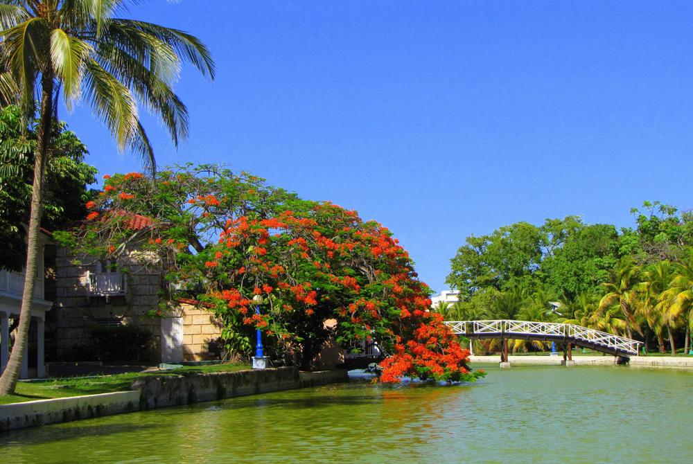 Kelionė į Kubą (egzotinės kelionės) 13