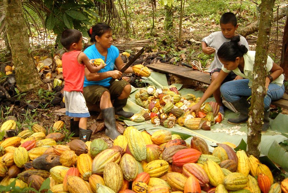 Kelionė į Kosta Riką (egzotinės kelionės)