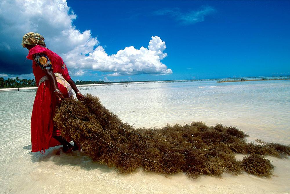 Kelionė į Tanzaniją (egzotinės kelionės) 26
