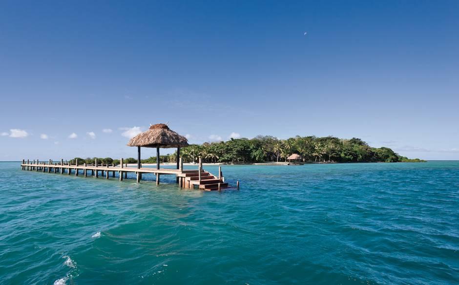 3 Dolphin+Island+Fiji