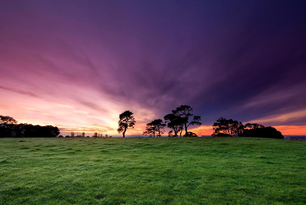Kelionė į Naująją Zelandiją (egzotinės kelionės) 3
