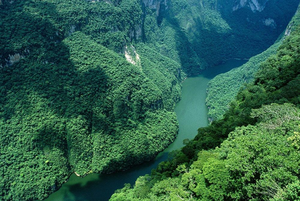 Kelionė į Braziliją (egzotinės kelionės) 42