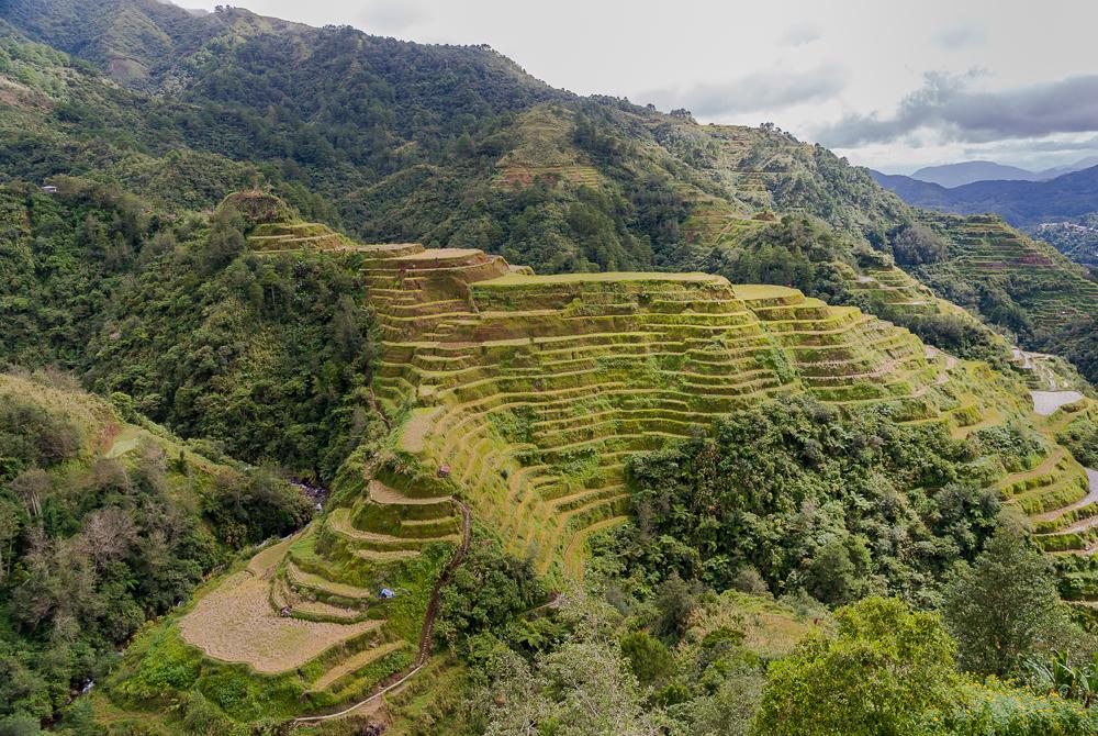 Kelionė į Filipinus (egzotinės kelionės) SONY DSC
