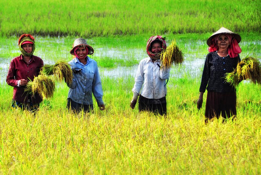 Kelionė į Kambodžą (egzotinės kelionės) 8