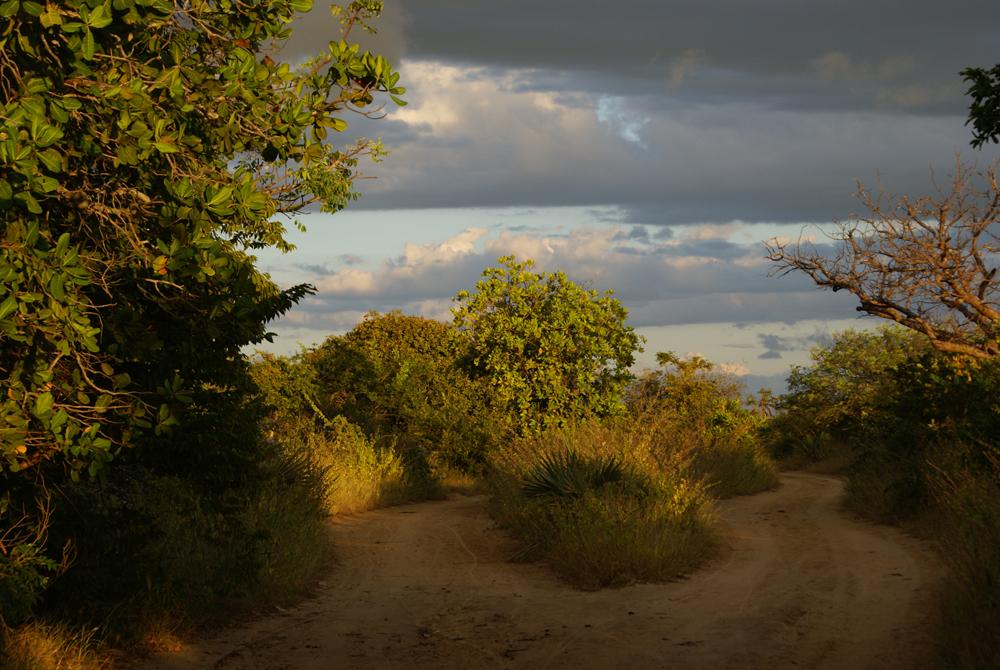 Kelionė į Madagaskarą (egzotinės kelionės) 27