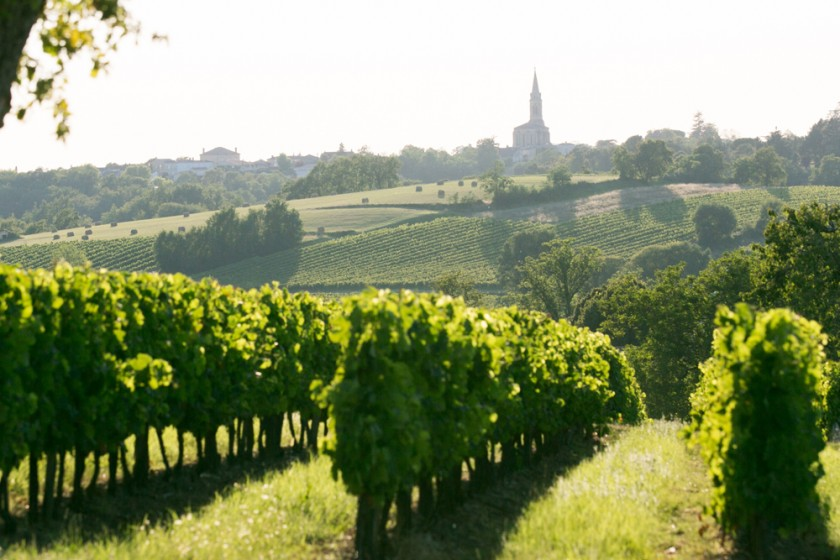 Paysage des Côtes de Bordeaux, près de Haux