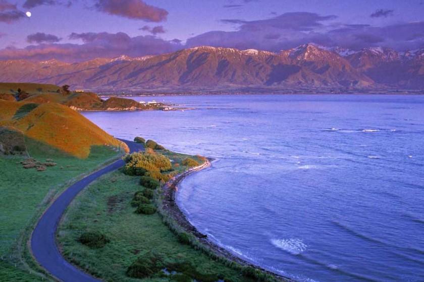 JAI-NZ02236